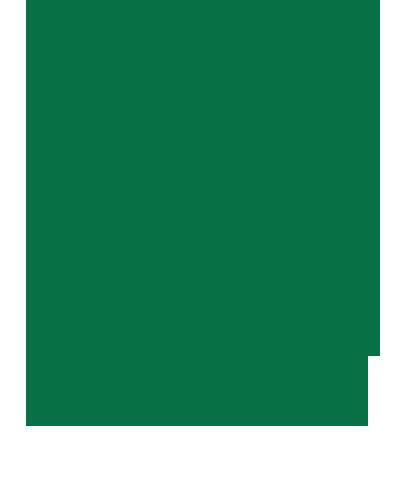 No Mayo